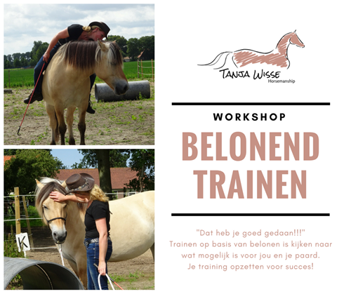Workshop belonend trainen